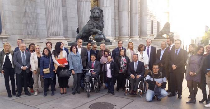 Foto de familia de las entidades de la discapacidad en el Congreso